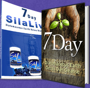 silica diet ebook
